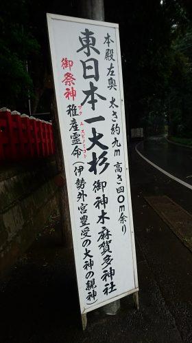 201866麻賀多神社_180616_0003