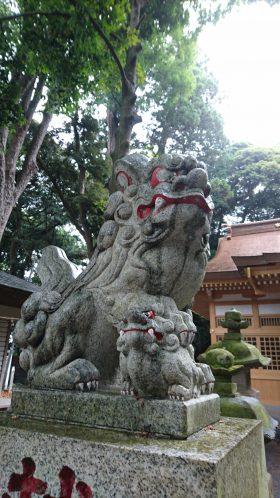 201866麻賀多神社_180616_0036
