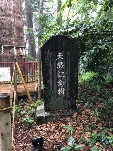 201866麻賀多神社_180616_0051