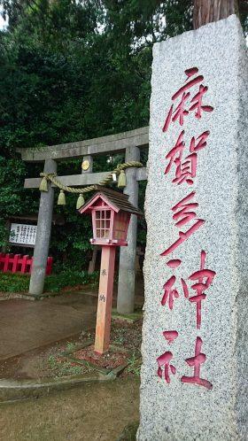 201866麻賀多神社_180616_0011