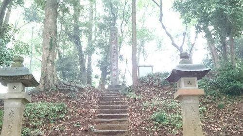 201866麻賀多神社_180616_0014