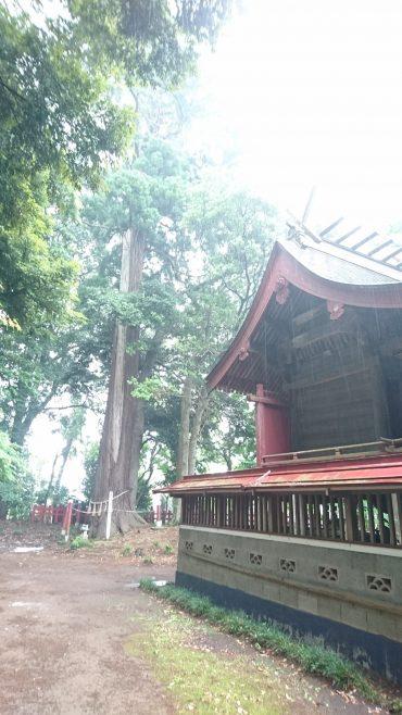 201866麻賀多神社_180616_0017