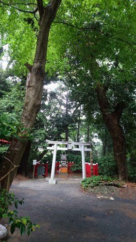 201866麻賀多神社_180616_0031