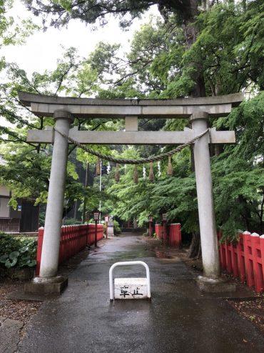 201866麻賀多神社_180616_0042