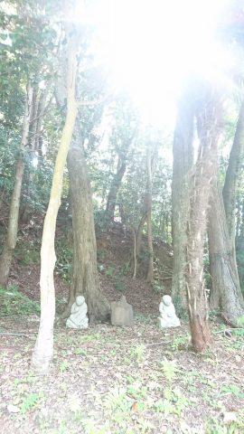 2018613猿田彦神社_180630_0019