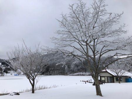 201916 長野ツアー_190108_0005